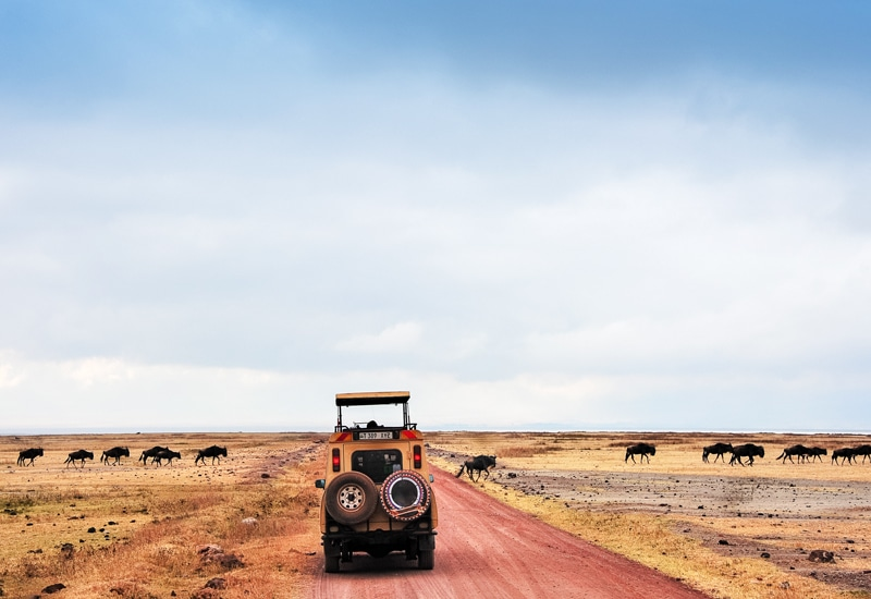 Précautions pour voyager en Afrique