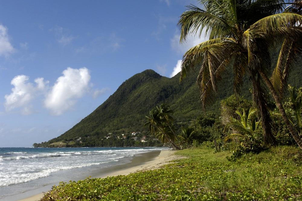 Quel est le meilleur moment pour aller en Martinique?